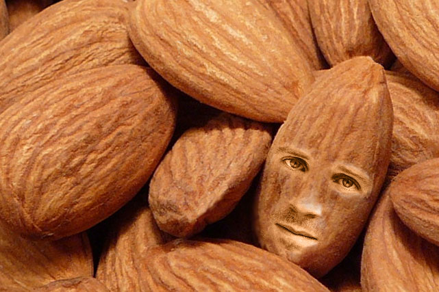 I like to think of the almond as Ralph Fiennes